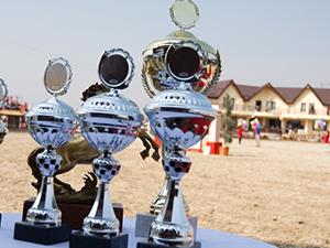 Marele Premiu al Bucurestiului 22-25.10.2011