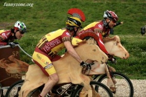funny horse riding pictures